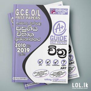 Art OL Past Paper Book